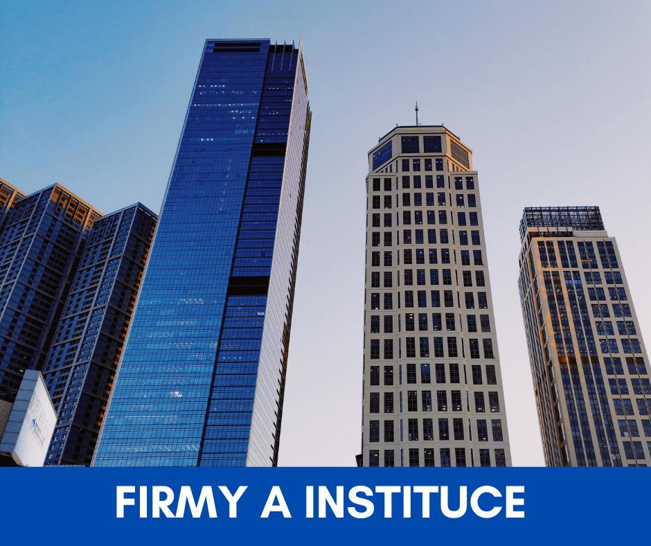 firmy a instituce
